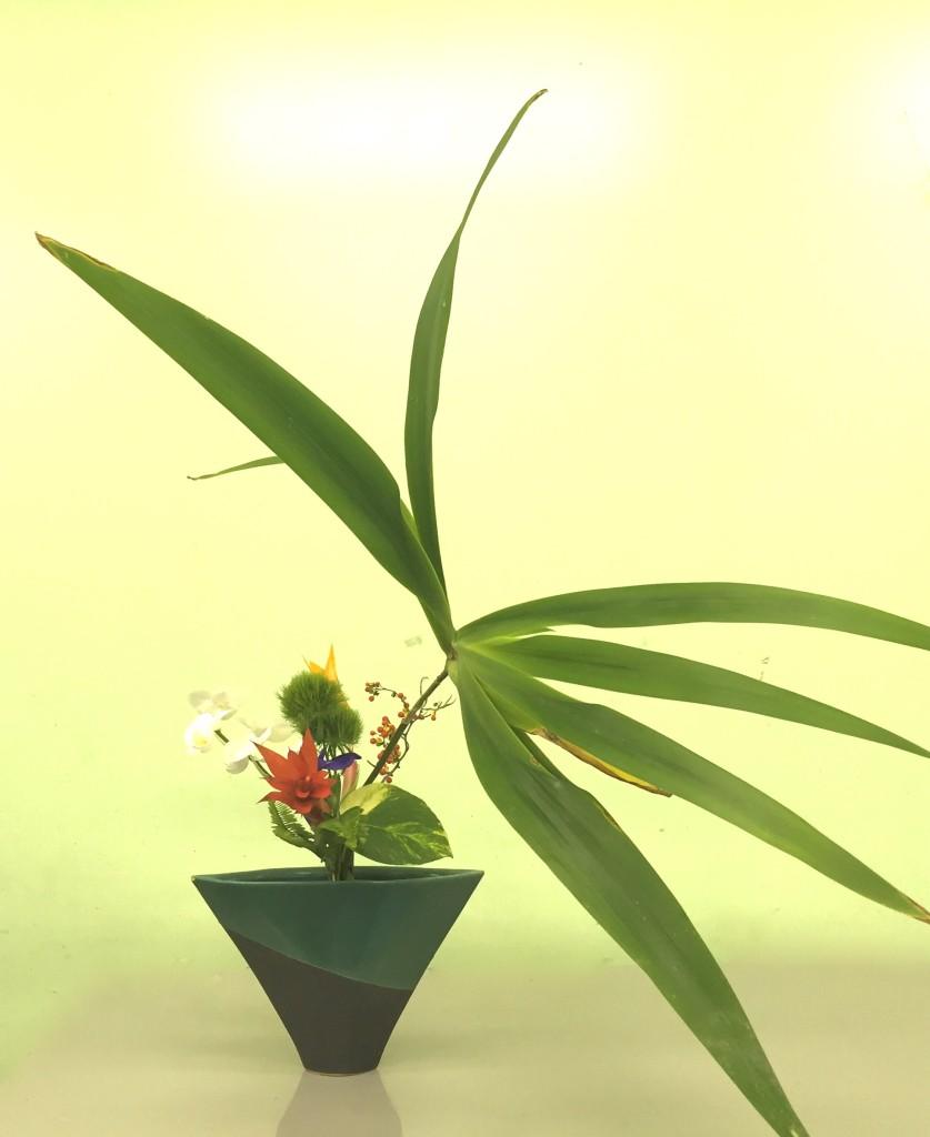 Rikka Shimputai by Stephanie English